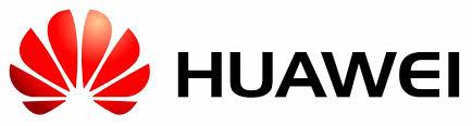 HUAWEI : SOIRÉE DE GALA ANIMÉE PAR HAYLEY